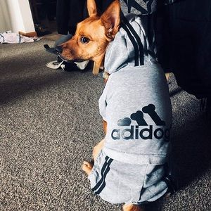 Other - Adidas 'adidog' pet clothes 🐾